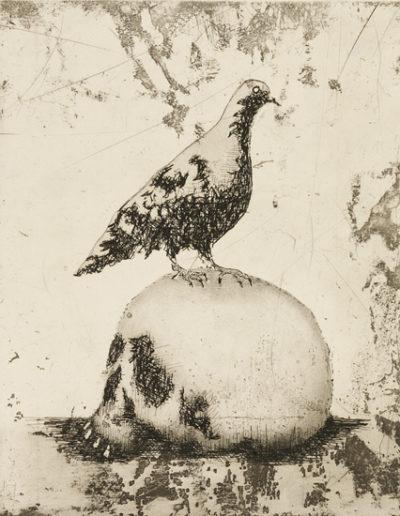 Pigeon's vanitas 2011